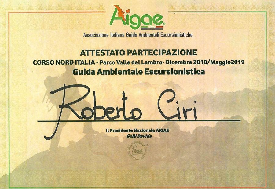 Attestato partecipazione corso AIGAE
