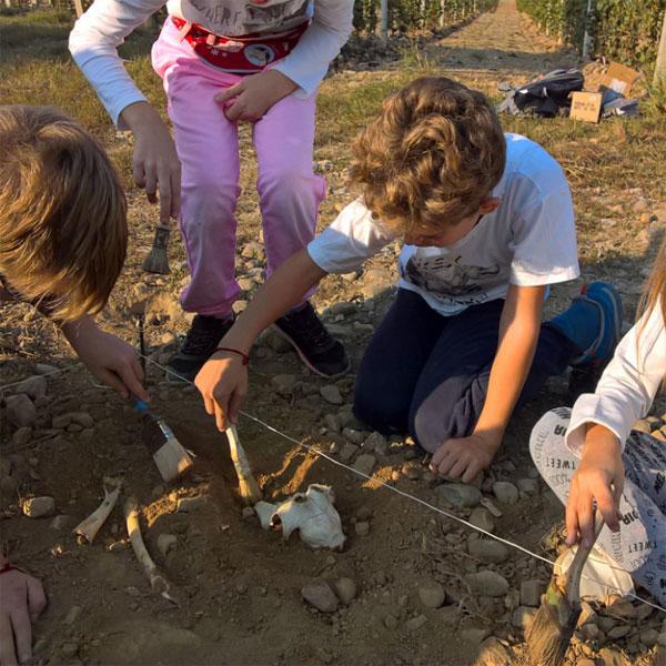 Attività di Educazione Ambientale e alla Sostenibilità