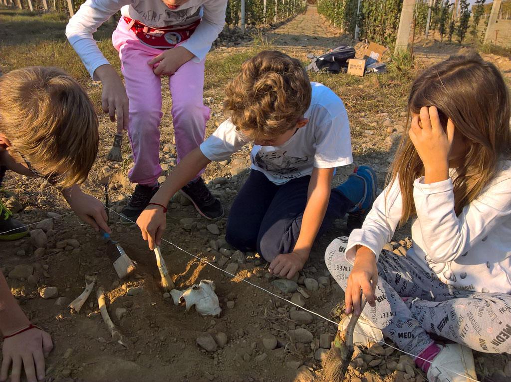 Attività di archeologia