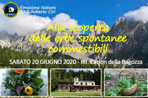 20/06/2020 – Workshop sulle erbe spontanee commestibili e tossiche