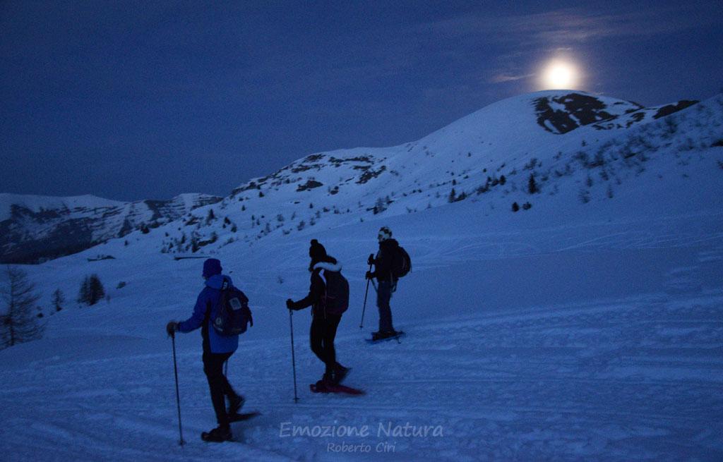 Escursioni al chiaro di luna