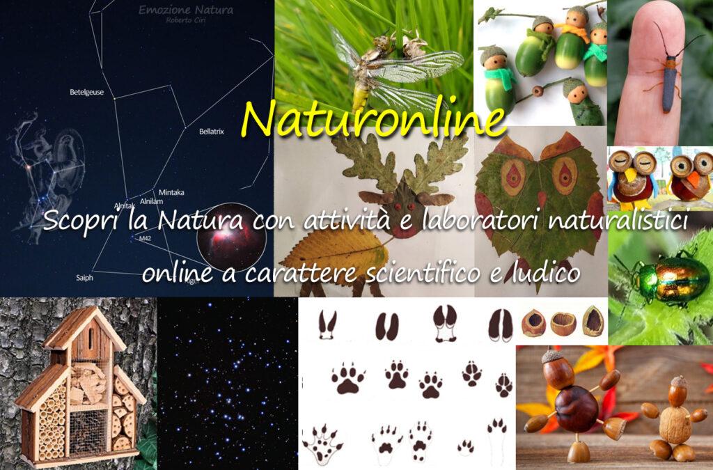 Naturonline